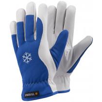 Winter-Ziegennarbenlederhandschuh